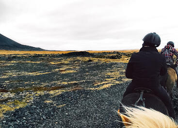 Muslim-travel-blog-Iceland-guide-things-to-do-horseback-riding