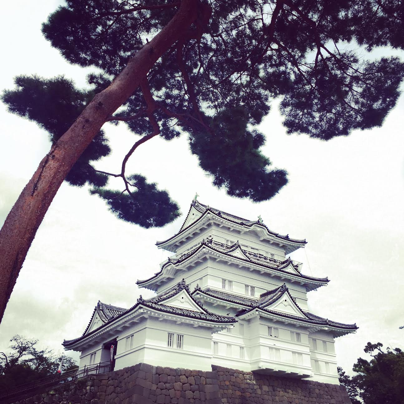 Muslim-travel-Japan-Odawara-castle.jpg