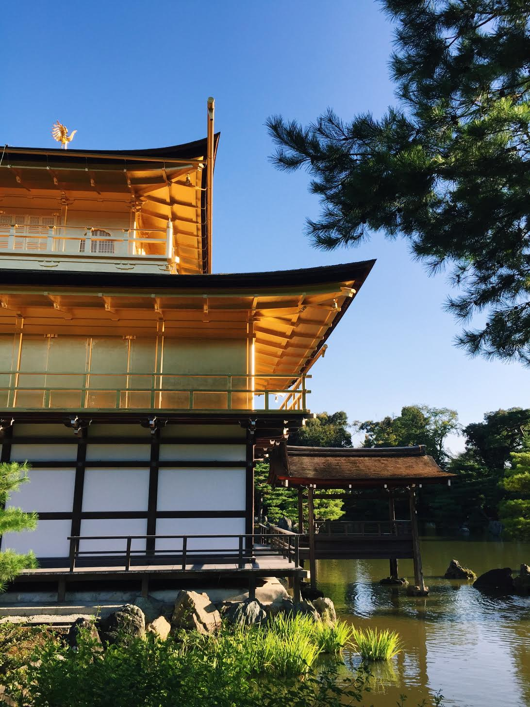 Muslim-travel-recommendations-Kinkaku-ji-Kyoto.jpg