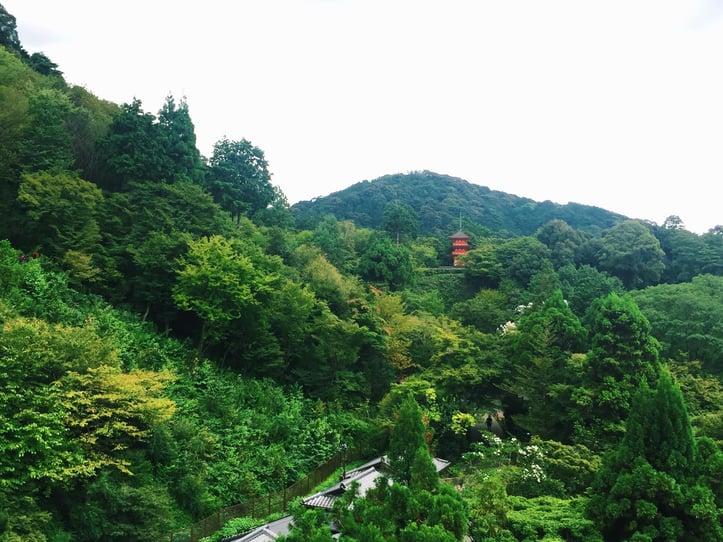Muslim-travel-tips-Kyoto-Kiyomizu-dera-view.jpg