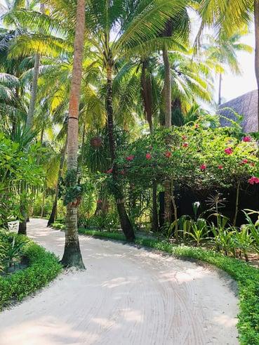 Muslim-travel-blog-Maldives-tips-island-pathways