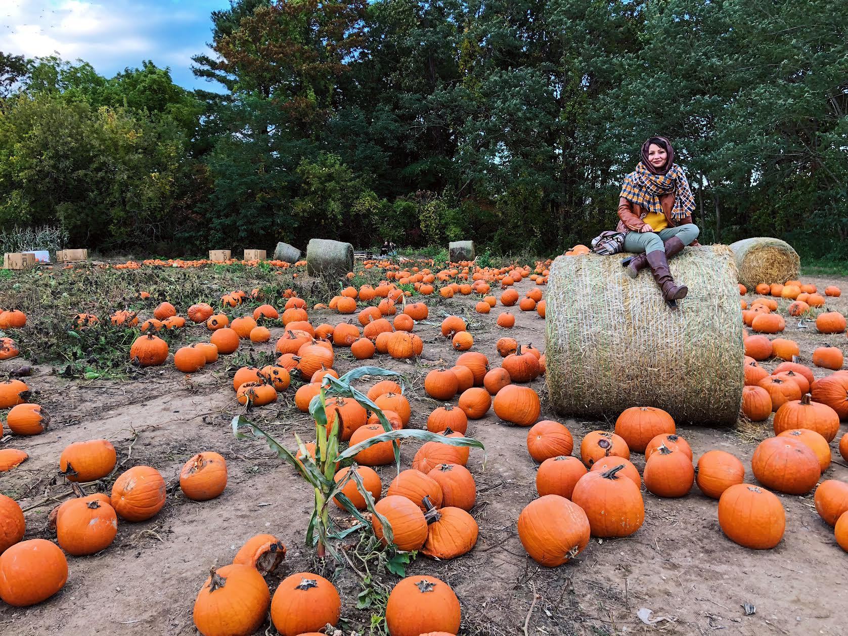 Muslim-travel-New-England-fall-activities-pumpkin-patch-visit