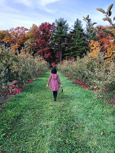 Muslim-travel-tips-New-England-fall-best-apple-picking